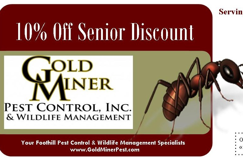 GoldMiner_Coupon_SeniorDisc