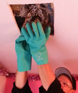 Auburn Pest Control: Removing Yellow Jacket Nest from Ceiling